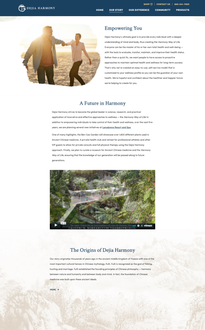 dh-website3