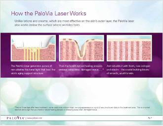 Palovia-Training5