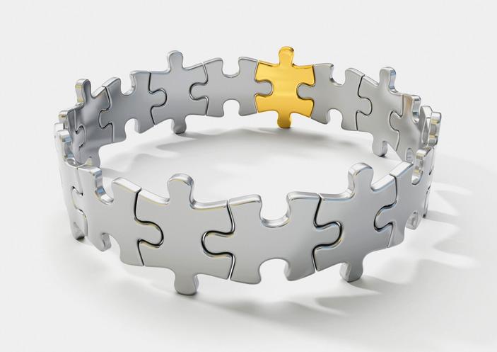 Brand portfolio strategy with circle example