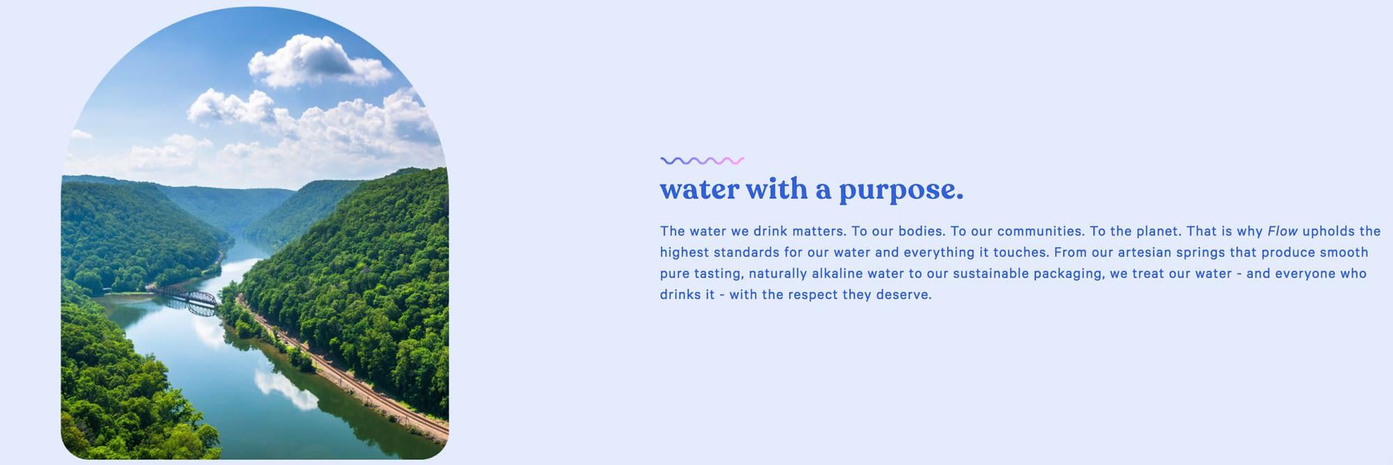 Flow brand purpose